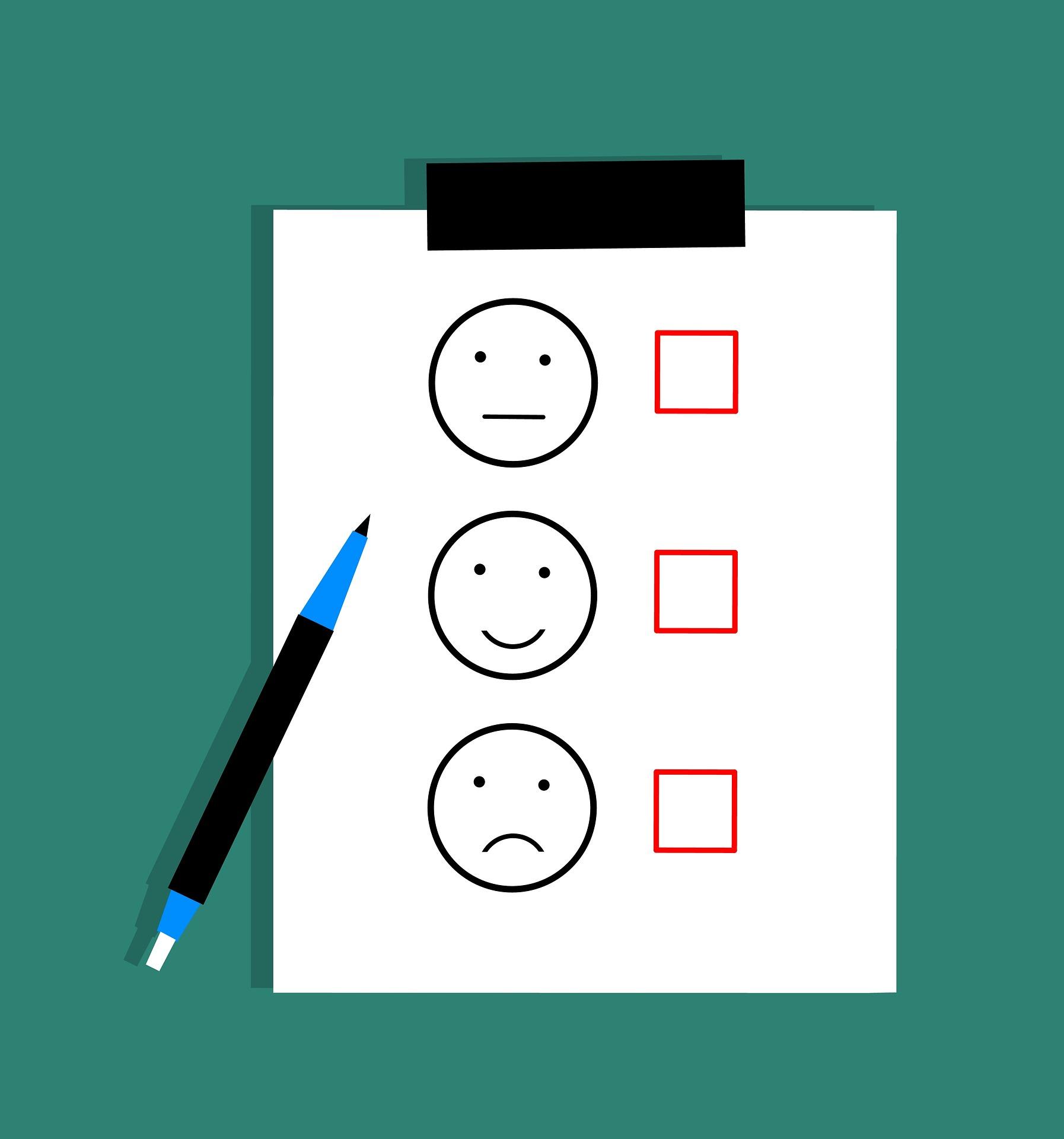 customer performance survey